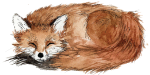 Brown Fox Creative Footer Sleeping Fox